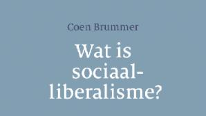 Brummer wat sociaal-liberalisme